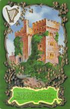 holA070056 - Kissed the Blarney Stone St. Patrick's Day Postcard