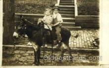 hor000012 - Real Photo  Horse Horses, Postcard Postcards