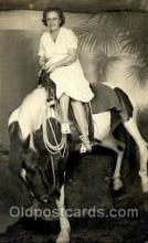 hor000013 - Real Photo  Horse Horses, Postcard Postcards