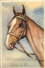 hor001127 - Artist Signed unknown,  Horse Postcard Postcards