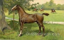 hor001159 - the Polo Pony Horse, Horses, Postcard Postcards