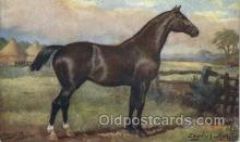 hor001161 - Artist Harry Payne, English Hunter, Horse, Horses, Postcard Postcards