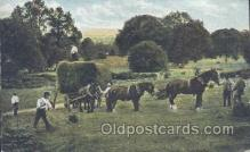 hor001208 - Horse Postcard Postcards