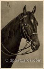 hor001272 - Old Vintage Antique Postcard Post Card