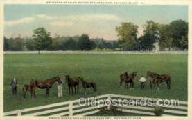 hor001312 - Ralph Bever Strassburger Residence Old Vintage Antique Postcard Post Card