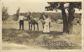 hor001317 - Old Vintage Antique Postcard Post Card