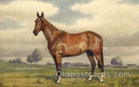 hor001320 - Knightsbridge Old Vintage Antique Postcard Post Card