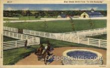 hor001340 - Blue Grass Stock Farm Old Vintage Antique Postcard Post Card