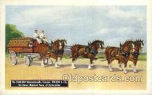 hor001361 - Six Horse Team Of Clydesdales, Wilson and CO. Horse, Horses Old Vintage Antique, Post Card Postcard