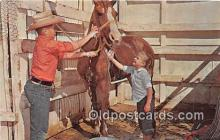 hor001424 - Owning a Horse  Postcard Post Card