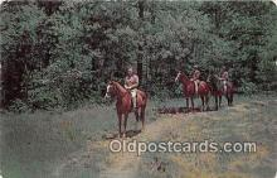 hor001432 - Riding  Postcard Post Card
