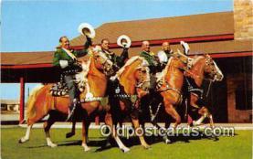hor001433 - Quartette of Palominos  Postcard Post Card