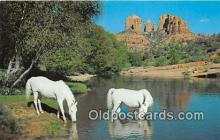 hor001504 - Baldwins Crossing Oak Creek Canyon, Arizona Postcard Post Card