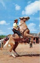 hor001517 - Ride 'Em Cowgirl  Postcard Post Card