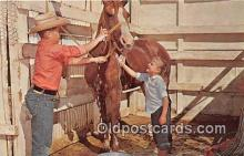 hor001589 - Owning a Horse Free Lance Photographers Guild, Inc Postcard Post Card