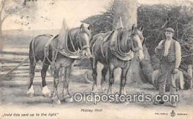 hor001626 - Midday Rest  Postcard Post Card