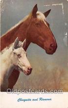 hor001655 - Chaquita & Ramona  Postcard Post Card