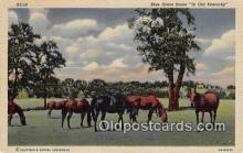hor001656 - Blue Grass Old Kentucky Postcard Post Card