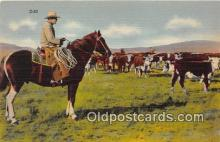 hor001721 - Cown Hand Rio Grande Postcards Post Cards Old Vintage Antique