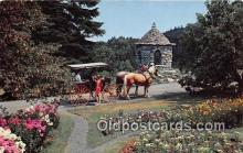 hor001727 - Mohonk Gardens Ulster Co, New York, USA Postcards Post Cards Old Vintage Antique