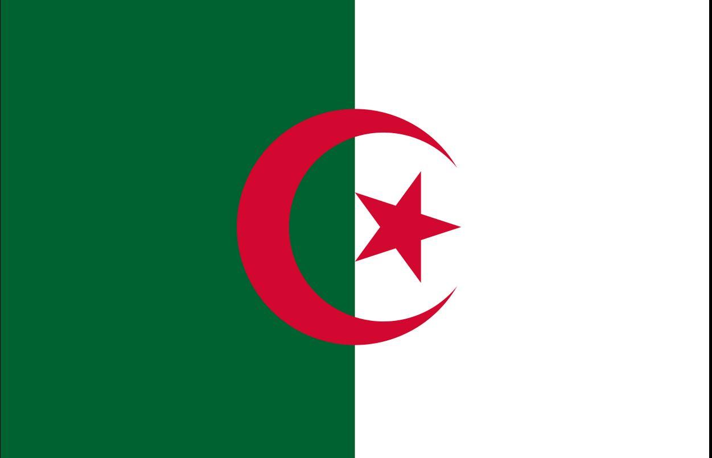 Algerian Postcards - Algeria Post Cards Antique Old Vintage