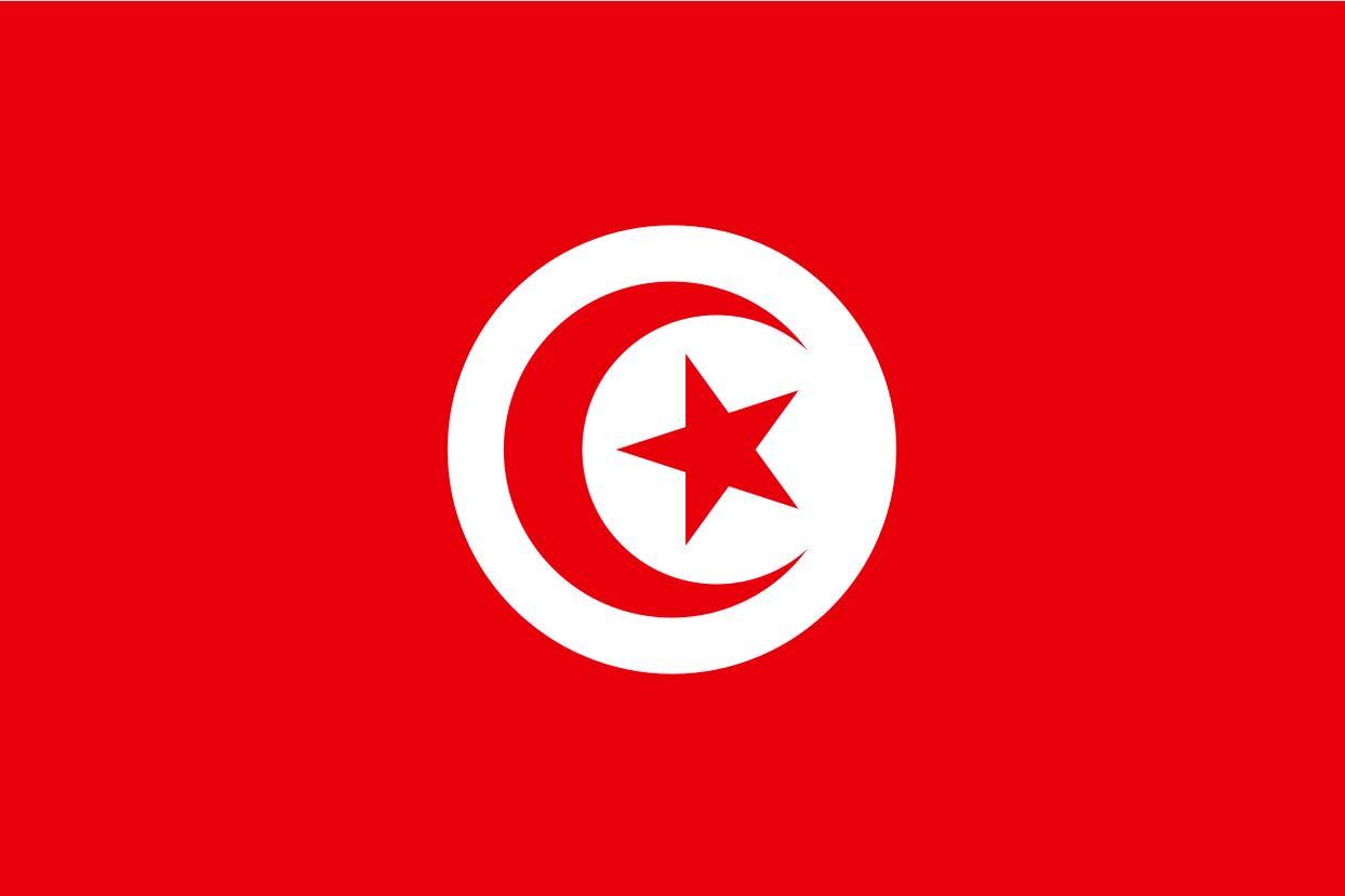 Tunisia Postcards Tunis Post Cards - Old Vintage Antique