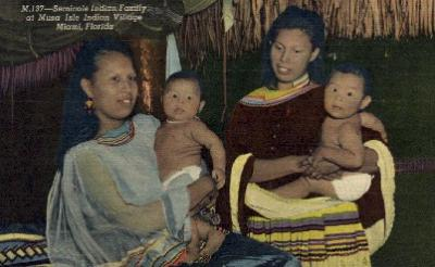 ind000587 - Seminole Indian Family Indian, Indians Postcard Postcards