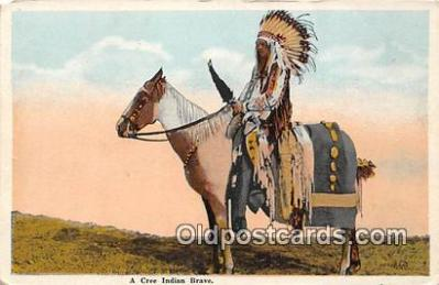 Cree Indian Brave