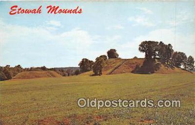ind300213 - Etowah Mounds Cartersville, Georgia, USA Postcard Post Cards