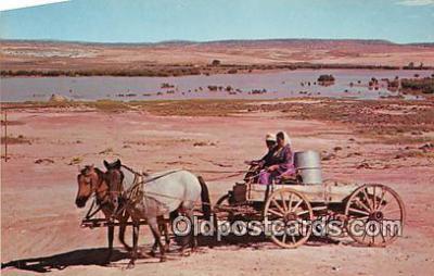 ind300256 - Horse Drawn Wagons Utah, Arizona, New Mexico, USA Postcard Post Cards