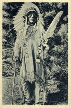 Chief Dakota