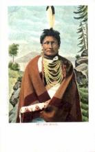ind000260 - Yellow Hawk Indian, Indians Postcard Postcards