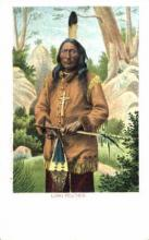 ind000263 - Long Feather Indian, Indians Postcard Postcards