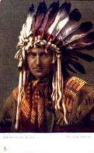 ind000273 - Indian, Indians Postcard Postcards