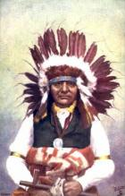 Chief White Swan
