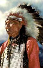 ind000285 - Indian, Indians Postcard Postcards