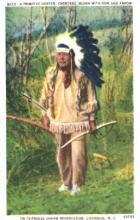 ind000291 - Cherokee N.C. USA, Indian, Indians Postcard Postcards