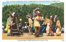 ind000348 - Indian, Indians Postcard Postcards