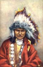 ind000403 - Chief Red Owl Indian, Indians Postcard Postcards
