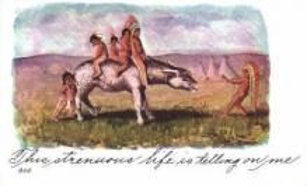 ind000436 - Indian, Indians Postcard Postcards