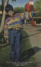 ind000478 - Miami Florida Indian, Indians Postcard Postcards
