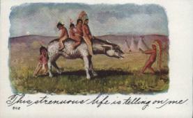 ind000591 - Indian Indians Postcard Postcards