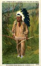 ind000662 - Cherokee Indian Reservation, Cherokee, NC, USA Indian, Indians, Postcard Postcards
