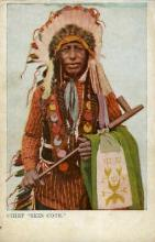 ind000684 - Chief, Skin Cote Indian, Indians, Postcard Postcards