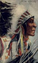 ind200008 - Chief Wolf Robe Indian Postcard Post Cards