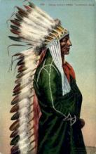 ind200025 - Chief Standing Bear Indian Postcard Post Cards