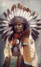ind200028 - Chief Hollow Horn Tucks Indian, Indians, Postcard Post Cards