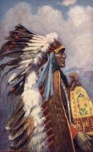 ind200032 - Chief  Stranger Horse Tucks Indian, Indians, Postcard Post Cards