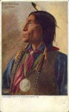 ind200041 - Chief Wolf Robe, Cheyenne Indian Postcard Post Cards