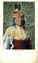 ind200045 - Thunder Hawk Indian Postcard Post Cards